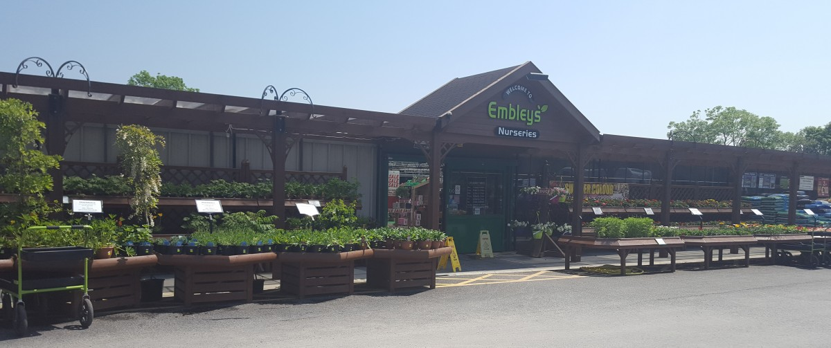 Stunning Embleys Nurseries Traditional Garden Centre With Magnificent China Garden Wimborne Besides Local Garden Centers Furthermore Reflective Garden Ornaments With Extraordinary Small Garden Bridge Also How To Plant Corn In A Garden In Addition Plastic Garden Containers Large And Basic Gardening As Well As Garden Wall Water Features Additionally Garden Edging Wood From Embleysnurseriescouk With   Magnificent Embleys Nurseries Traditional Garden Centre With Extraordinary China Garden Wimborne Besides Local Garden Centers Furthermore Reflective Garden Ornaments And Stunning Small Garden Bridge Also How To Plant Corn In A Garden In Addition Plastic Garden Containers Large From Embleysnurseriescouk